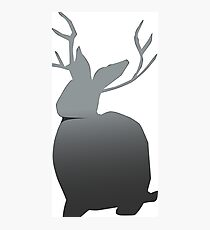Miike Snow Logo Photographic Print