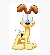 Simple Odie Photographic Print