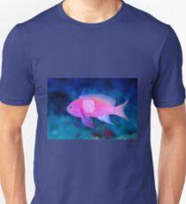 Squarespot Anthias T-Shirt