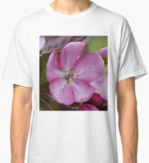 pink apple tree blossoms Classic T-Shirt