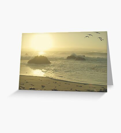 Serenity at the shores Greeting Card