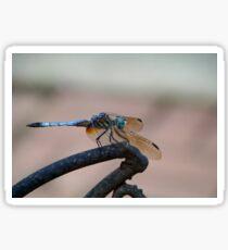 Dragon Wings Sticker