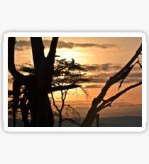Unspoilt Sunrise Sticker
