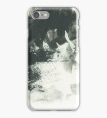 Sculpture in the Park iPhone Case/Skin