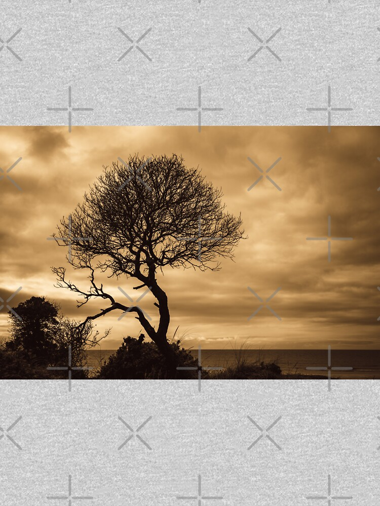 Horizon by MelBrackstone