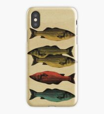 One fish, two fish . . . iPhone Case/Skin