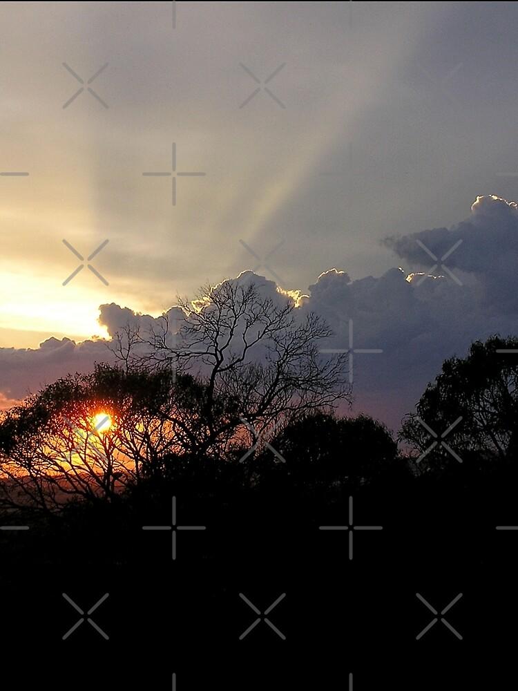 Verandah Views by webgrrl