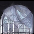 Hand-Painted Blue Curtain in an Arched Window by Wayne King