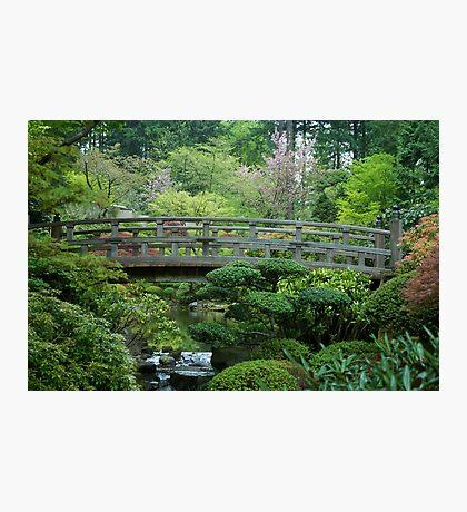 Bridge Over Peaceful Waters Photographic Print