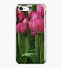 Vibrant pink Tulips iPhone Case/Skin