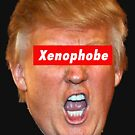 Trump Xenophobe by Thelittlelord