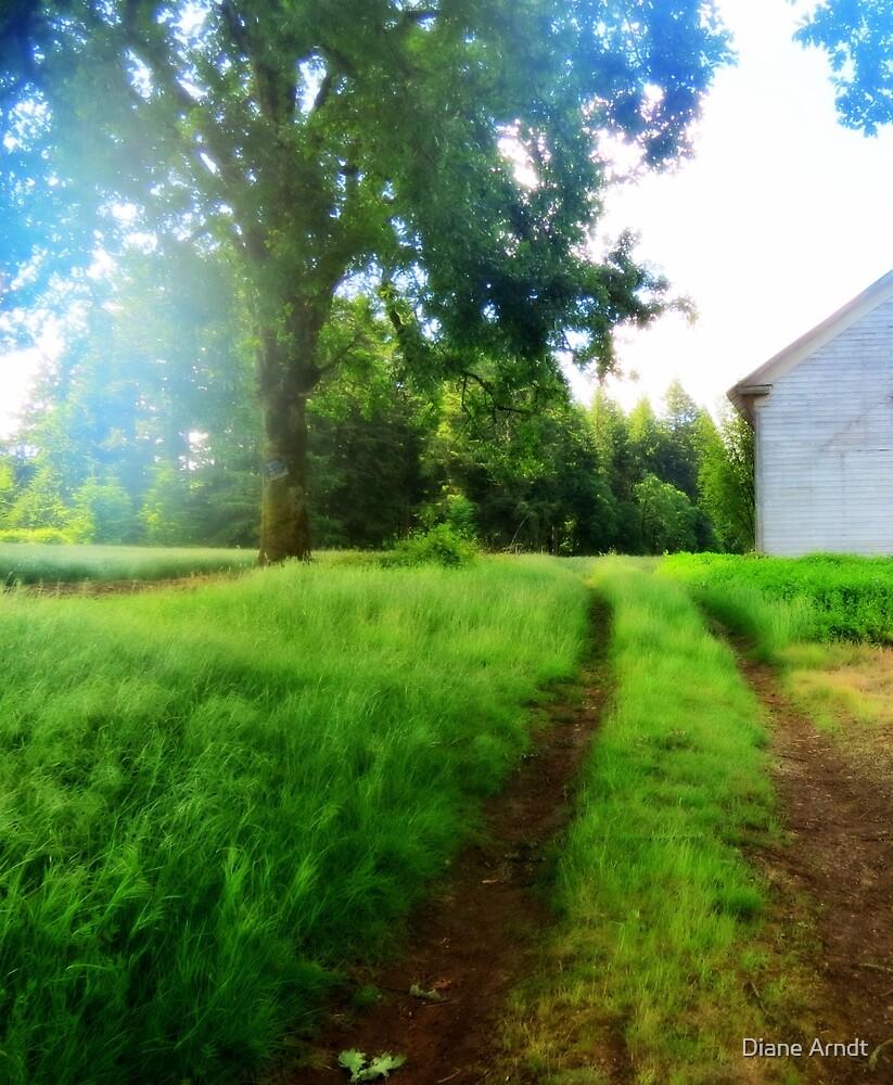 Just Go Around The Back...Stayton Oregon by Diane Arndt
