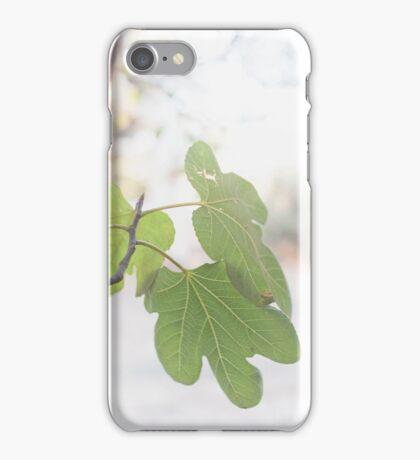 Fig iPhone Case/Skin