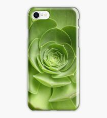 Aeonium iPhone Case/Skin