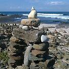Dolphin Point Beach Rock Garden by BronReid