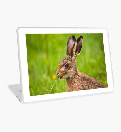 Brown Hare Laptop Skin