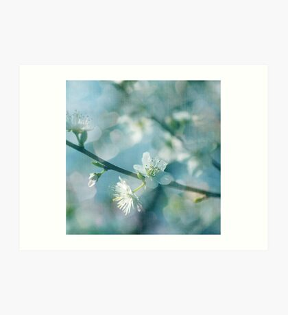 Blossoms in Blue Art Print