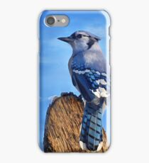 Heavenly Jay iPhone Case/Skin