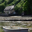 THE COTTAGE BY THE SEA by Michael Carter