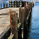 Private Pier  by Heather Friedman