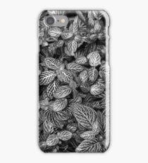 Searsucker Leaves BW iPhone Case/Skin