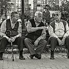 Three Old Friends by Maria  Gonzalez