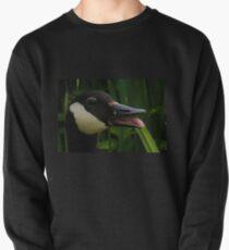 Happy Goose...........Dorset UK Pullover