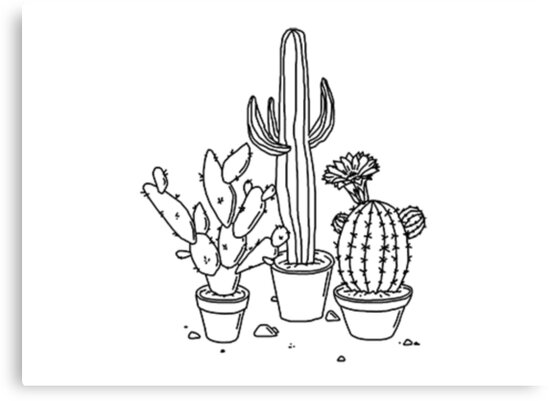 Hand Drawn Cacti by Ravanna Lotus