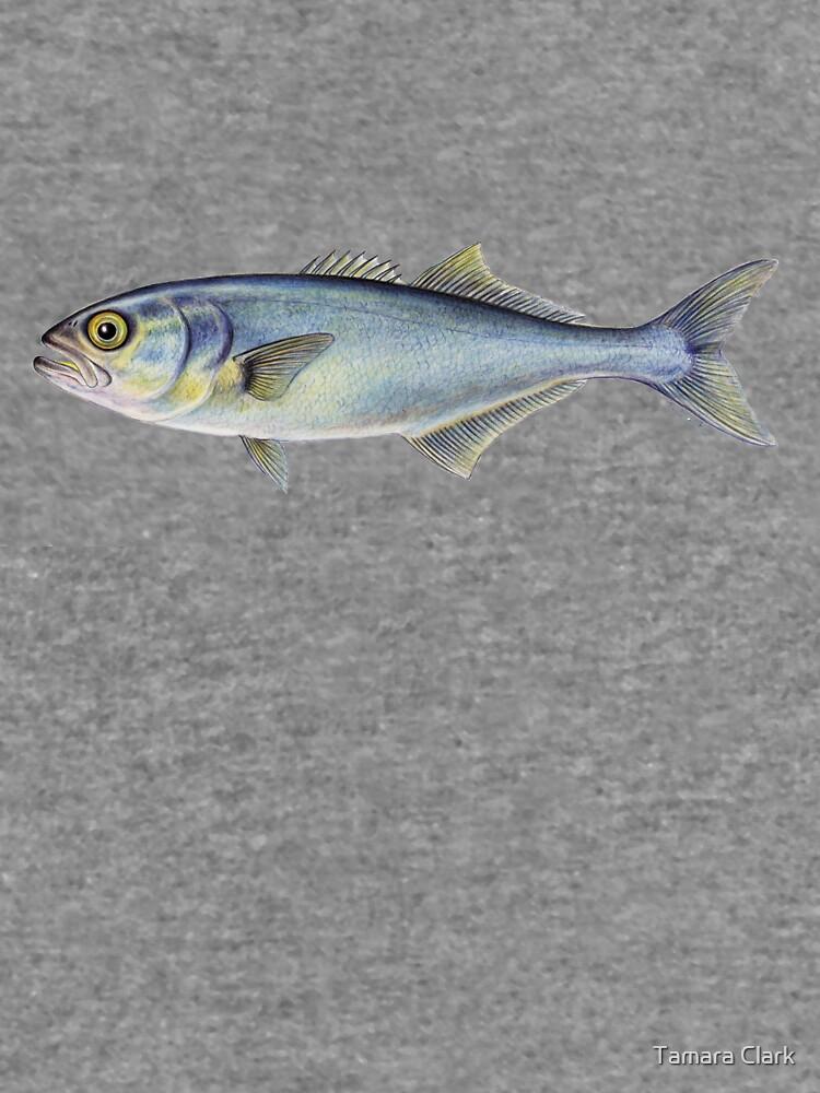 Bluefish (Pomatomus saltatrix) by edenart