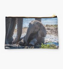 Baby elephant sitting in mud beside mother Studio Pouch