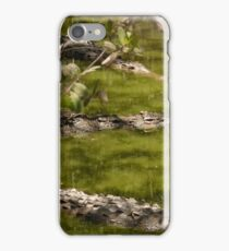 wildlife in puerto vallarta - vida salvaje en puerto vallarta iPhone Case/Skin