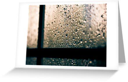 rain by Jen Wahl