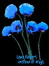 blue poppy by LudaNayvelt