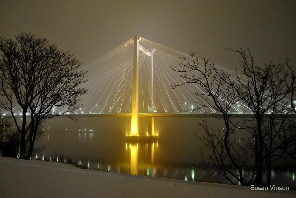 Snowy Night by Susan Vinson