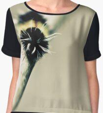 Moth Women's Chiffon Top