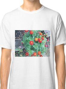 Marigolds Classic T-Shirt