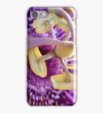 Passion Flower 1 iPhone Case/Skin