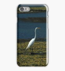 Great Heron Standing at the Edge of a Lake iPhone Case/Skin