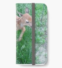 Fawn iPhone Wallet/Case/Skin