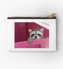 Little Rascal Raccoon Studio Pouch