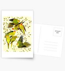 Carolina Parakeet Postcards