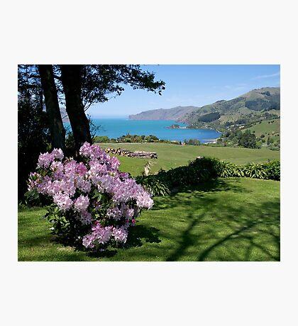 Garden View, Banks Peninsula, South Island, New Zealand. Photographic Print