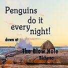 Penguins by diveroptic