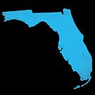 Florida by youngkinderhook