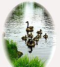 Canadian goose family vignette by Beth Brightman