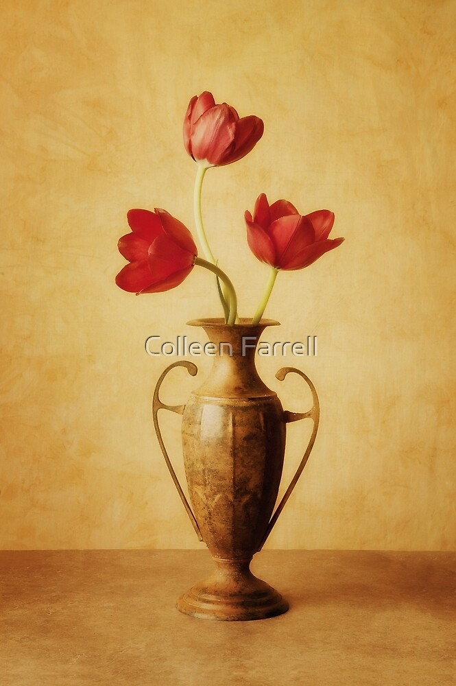 Timeless by Colleen Farrell