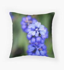 Grape Hyacinth - Muscari botryoides Throw Pillow