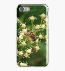 Bee on a Tree iPhone Case/Skin