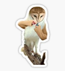 A Barn Owl smoking a Bowl Sticker