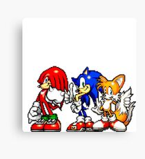 Knuckles,Sonic & Tails Canvas Print